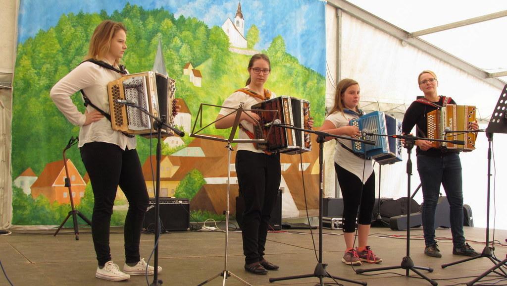 Harmonikarski orkester Stanka Mikole (foto: Marko Zdovc)