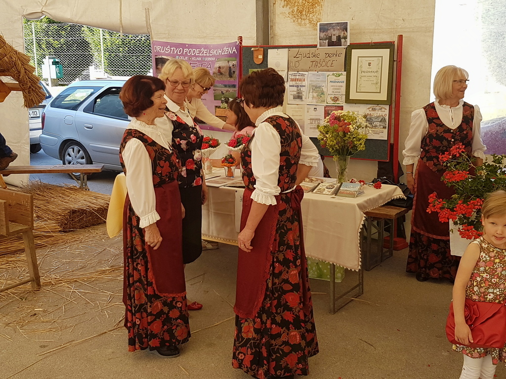 Ljudske pevke Taščice (foto: Franci Kuzman)