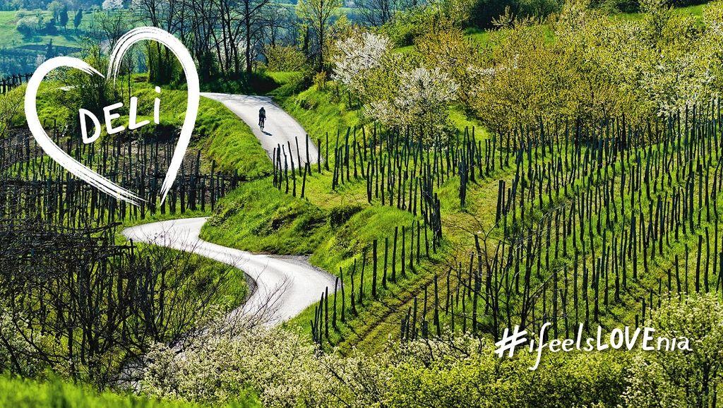 Povejmo vsem, kako lepa in drugačna je Vipavska dolina!
