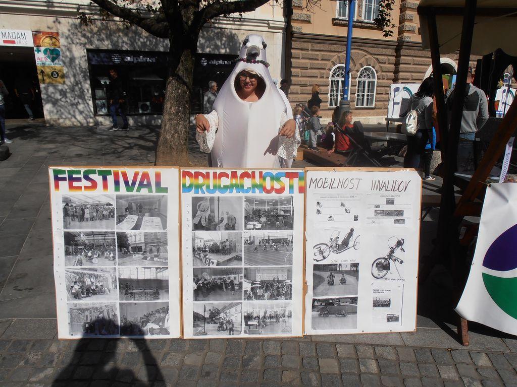 BAZAR - 12. Festivala drugačnosti  in 21. Mirovniški festival