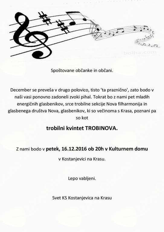 Božično novoletni koncert