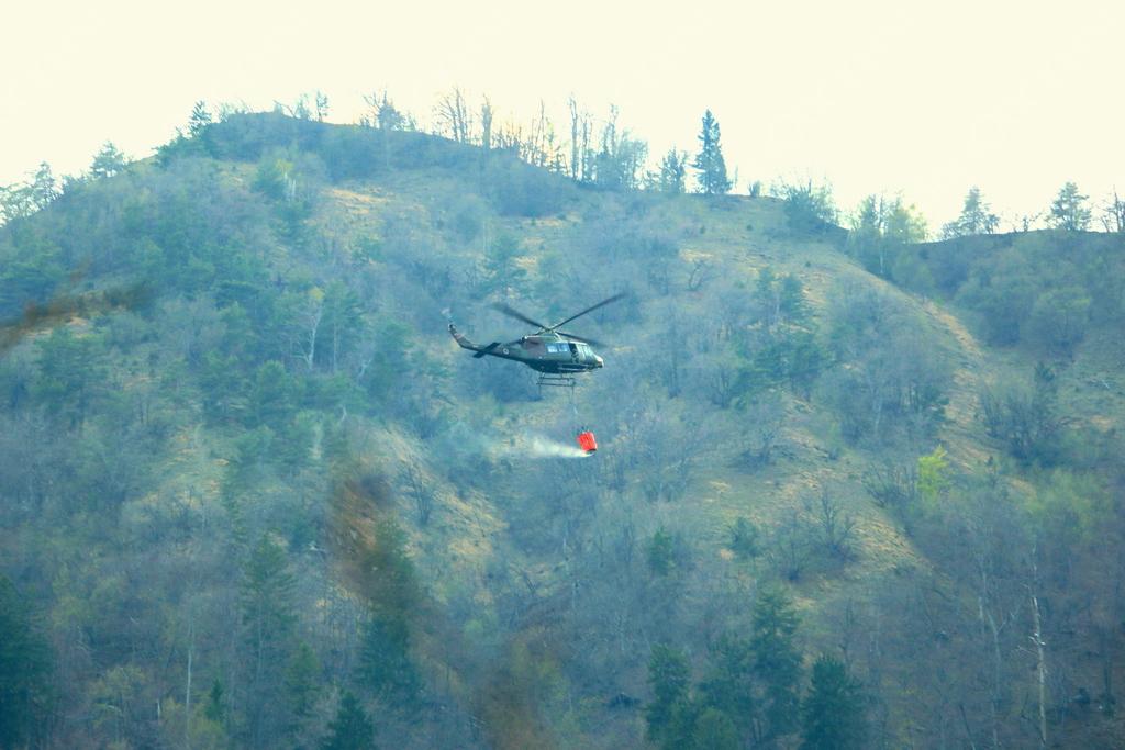 Gozdni požar združil reševalce