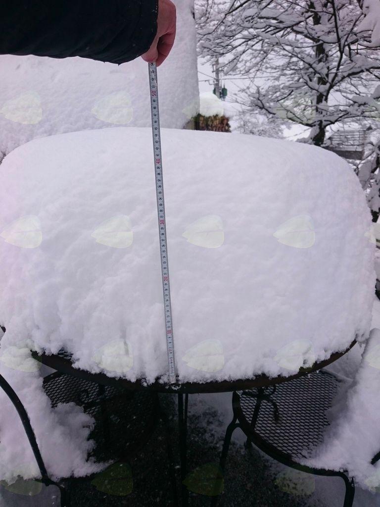 Polhov Gradec v oklepu snega