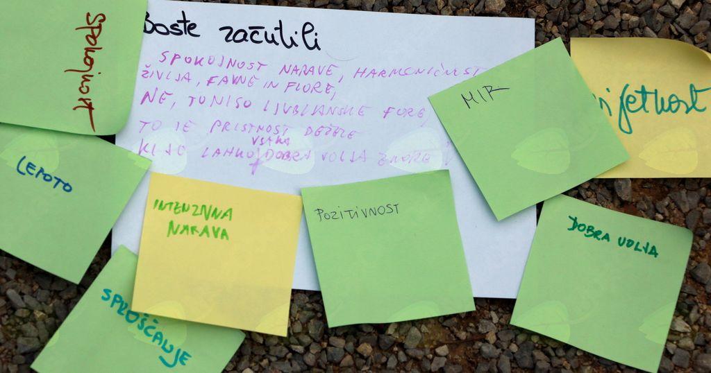 Interaktivno učenje vodnikov, v parku smo pisali asociacije.