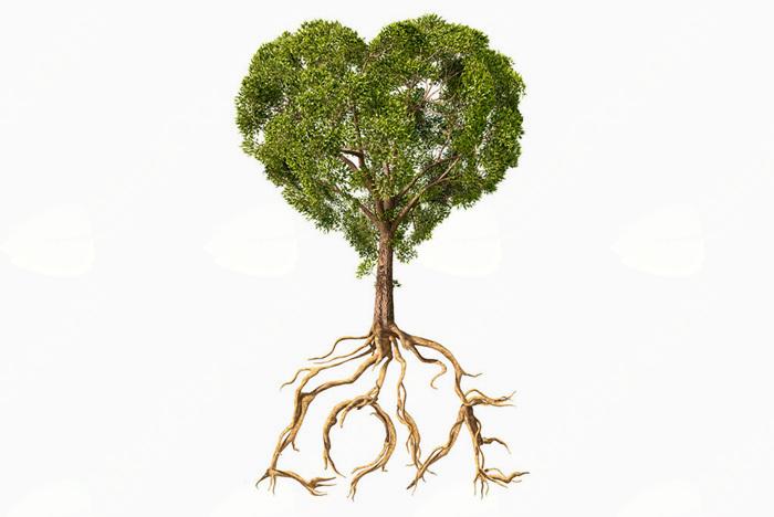 Valentin, Valentin pokaži ključ od korenin