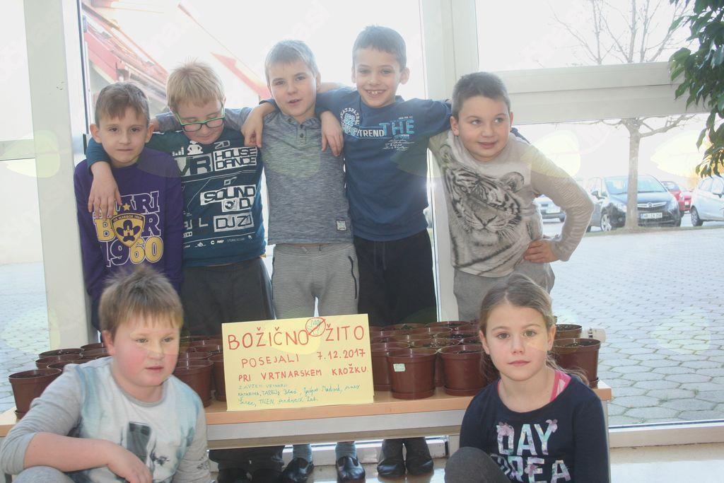 Mladi vrtnarji na OŠ Cirkovce