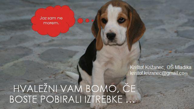 Problematika puščanja pasjih iztrebkov na javnih površinah