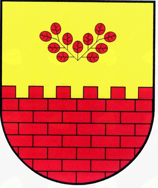 Občina Miren-Kostanjevica je objavila dva razpisa s področja družbenih dejavnosti
