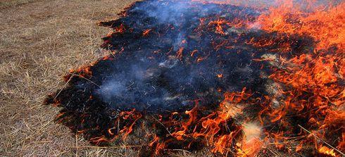 Razglašeno prenehanje velike požarne ogroženosti naravnega okolja