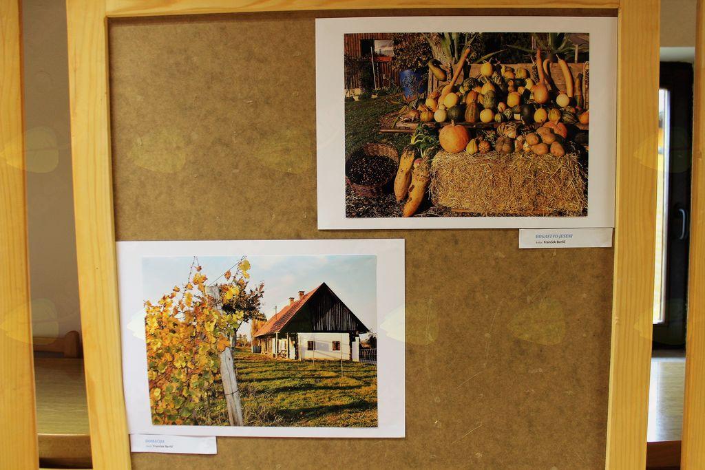 Fotografiji člana DU Velka F. Berliča.