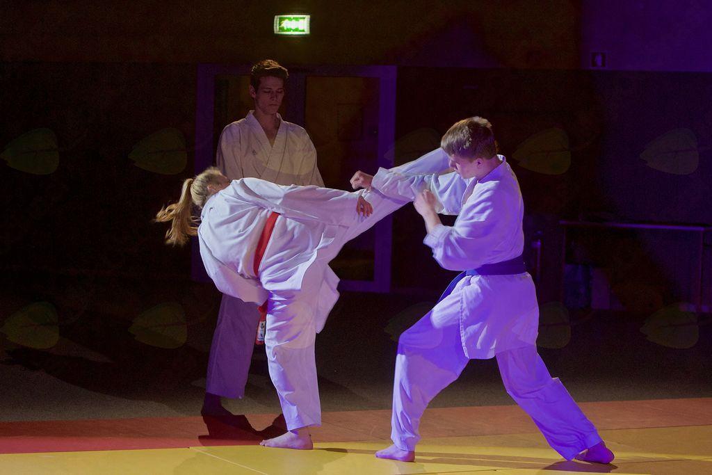 Tudi karateisti Kajuh karate teama so popestrili program.