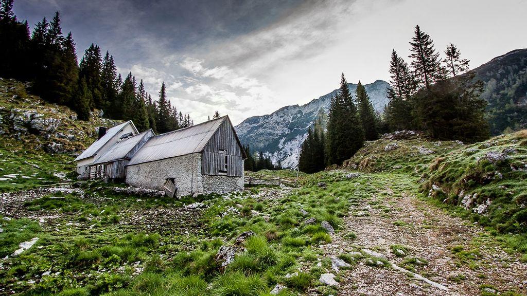 Brezplačen voden pohod na planino Za Depjem