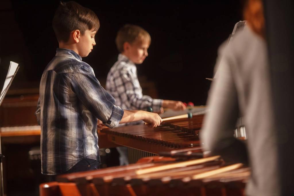 46. Tekmovanje mladih glasbenikov Slovenije - TEMSIG 2017
