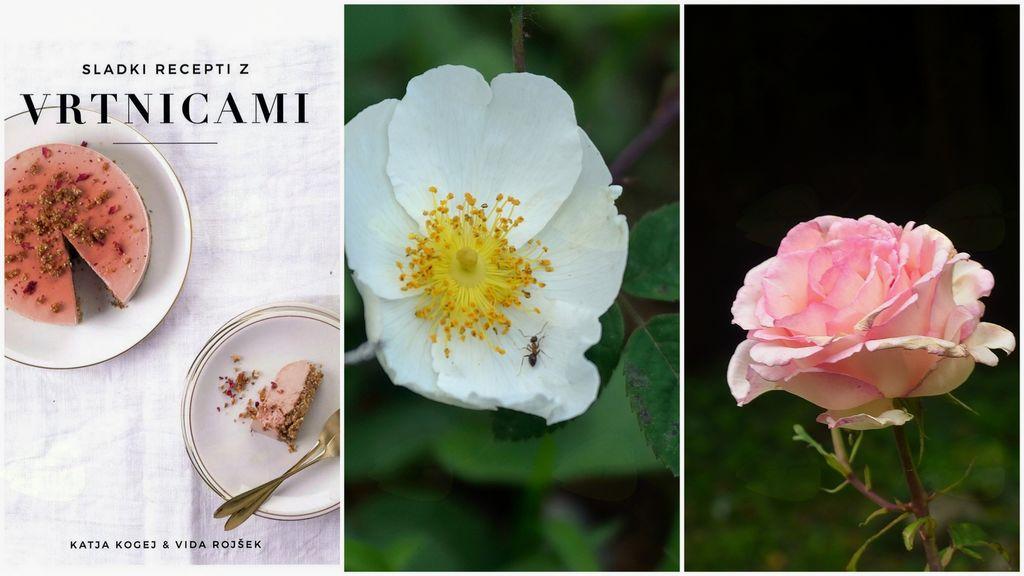 Vrtnice in šipki