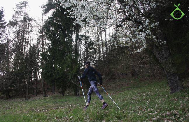 Tečaj nordijske hoje @ Gradiško jezero ... ODPOVEDAN