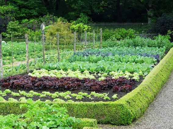 Vrtni center Eurogarden in pomlad