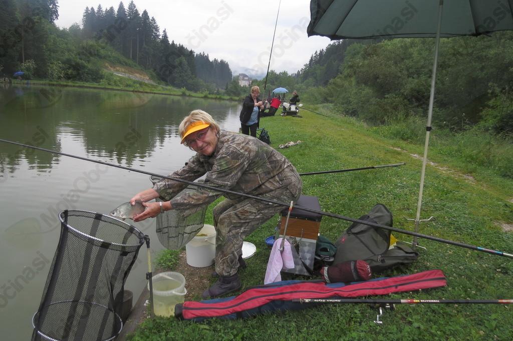 Lovljenje rib - Stanislava Tamše