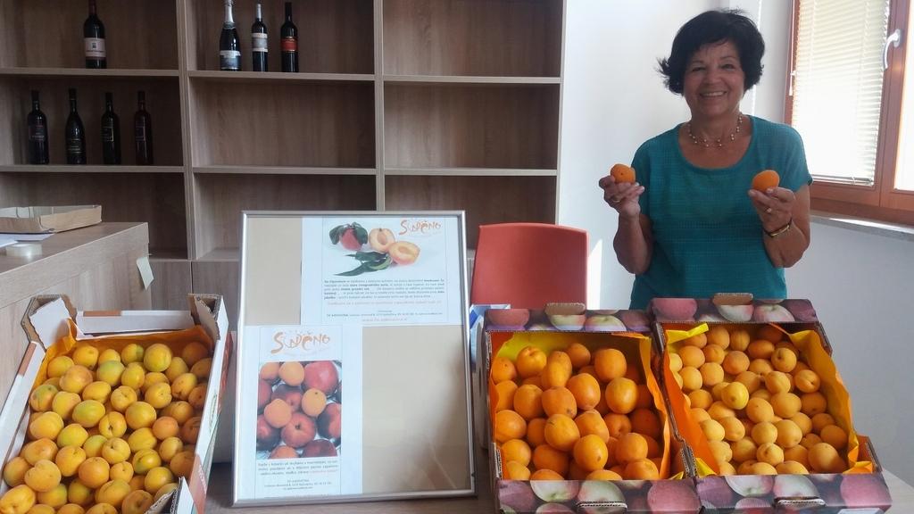 Z Vero Kodrič o marelicah in sušenju sadja