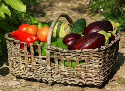 """Predavanje """"Zdrava zelenjava je osnova za dober pridelek"""""""