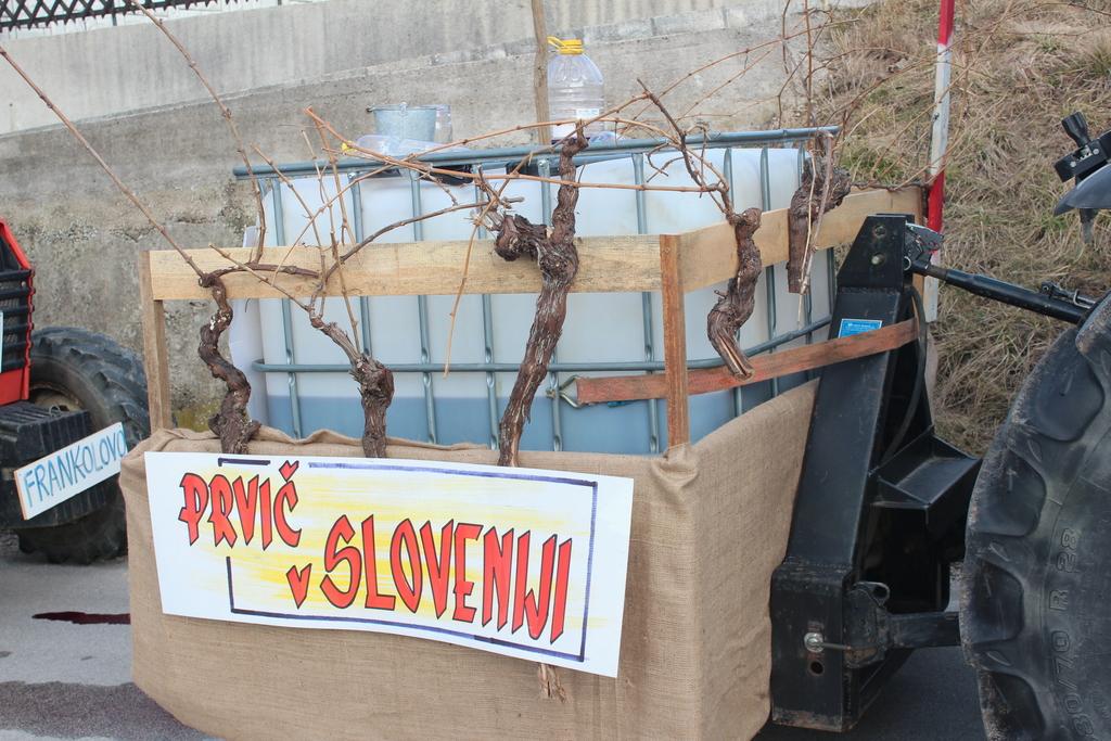 Vojniški vinogradniki na pustnem karnevalu v Novi Cerkvi