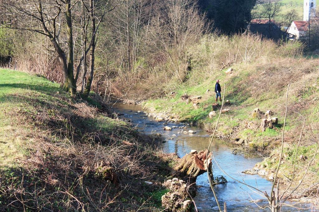 Kako dolgo bo potok ostal čist?