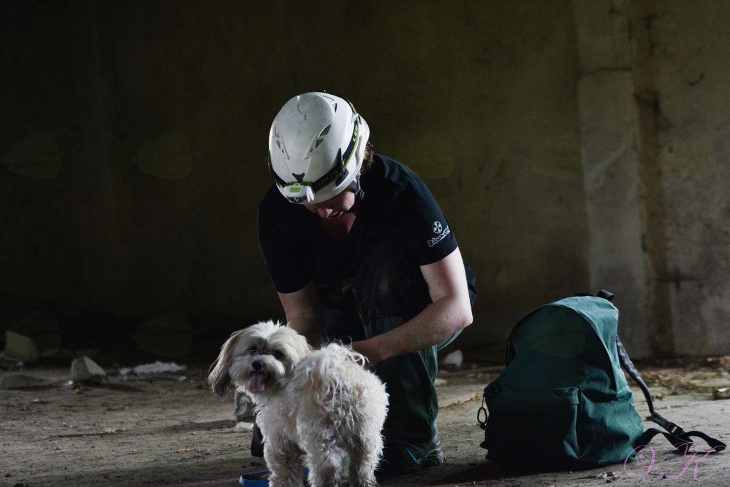 4. mednarodna vaja reševalnih psov občine Vojnik in CZ Vojnik