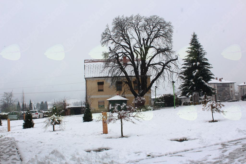 Jernejev park, park zaslužnih