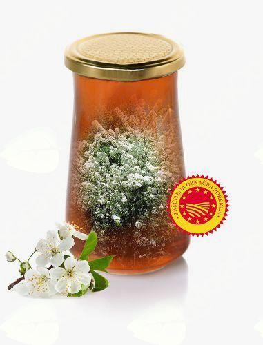 Kaj lahko storimo za ohranitev čebel?