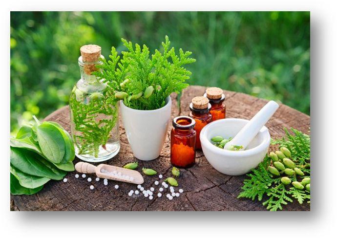 Homeopatska zdravila