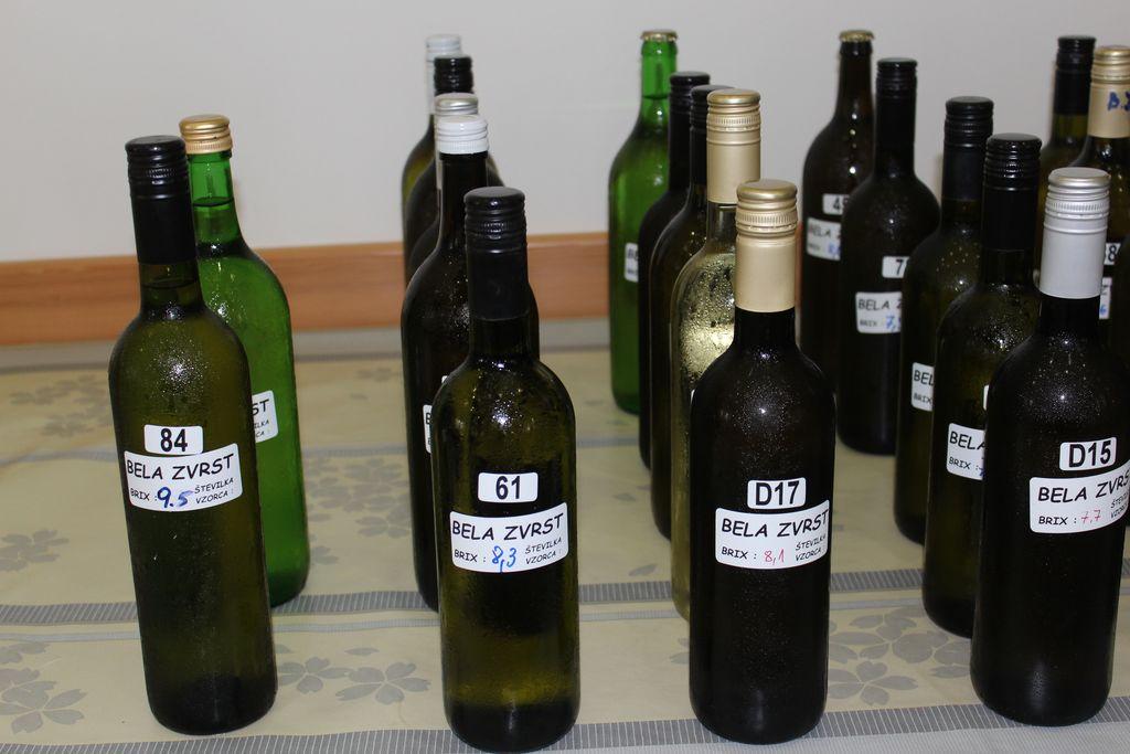 Iz lanskega zbiranja vzorcev vin