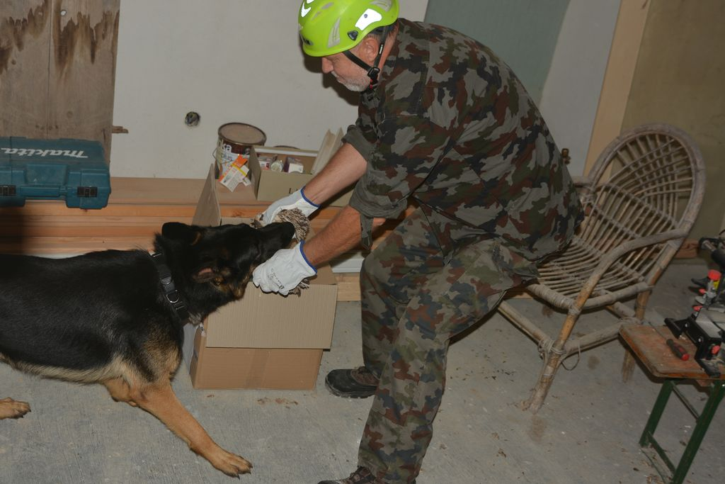 Vikend trening reševalnih psov