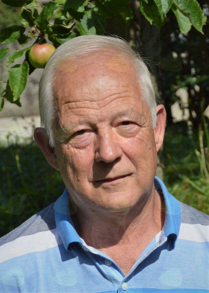 Ko les zaživi - razstava rezbarja Petra Gučka