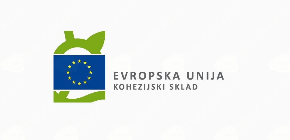 Zaključek druge faze izdelave Celostne prometne strategije; vizija, prioritete in ukrepi za razvoj trajnostne prometne ureditve v Občini Bled