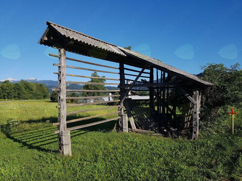 Občina Bled objavila razpis za kmetijstvo
