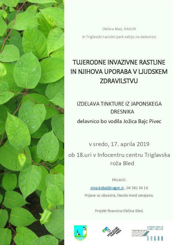 Tujerodne invazivne rastline in njihova uporaba v ljudskem zdravilstvu