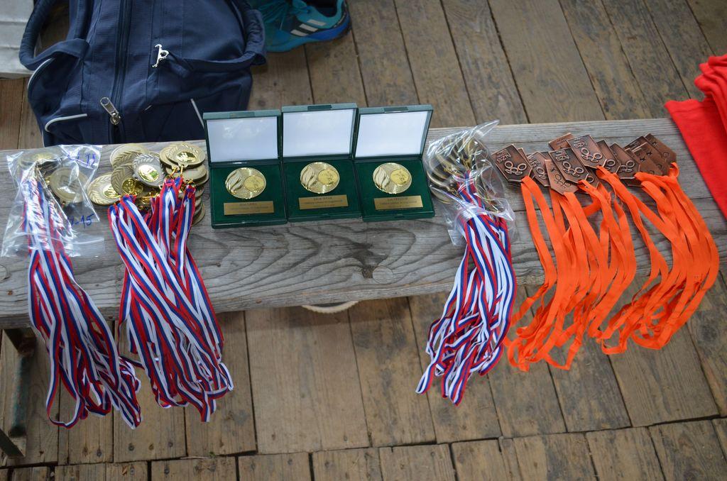Medalje in priznanja