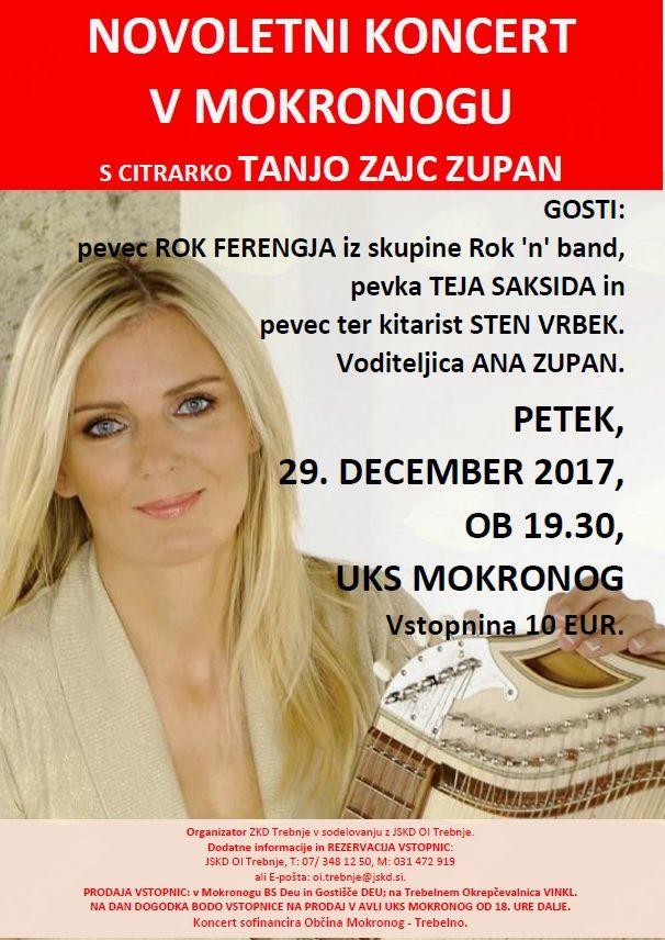 Novoletni koncert v Mokronogu s citrarko Tanjo Zajc Zupan