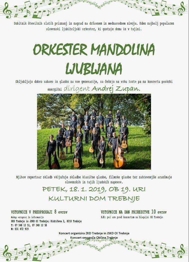 Orkester Mandolina Ljubljana