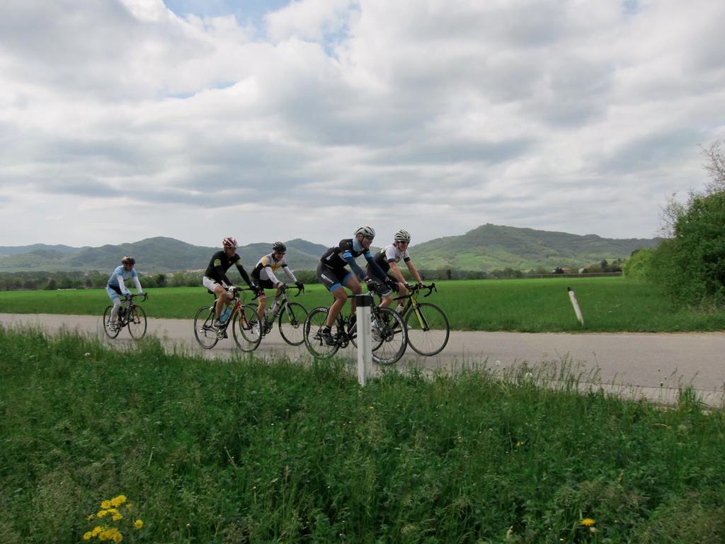 7. dobrodelno 12 urno kolesarjenje po Občini Trebnje