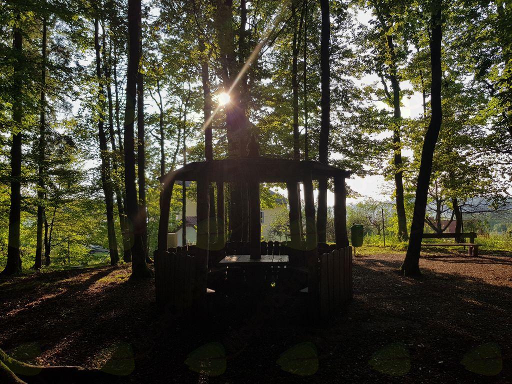Bi radi združili prijetno s koristnim? Pridite v Jurčkov gozd!
