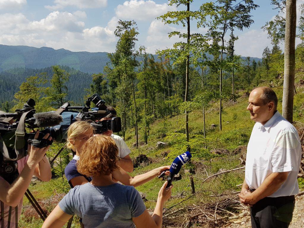 Sanacija gozdov po vetrolomu 2017 se uspešno zaključuje