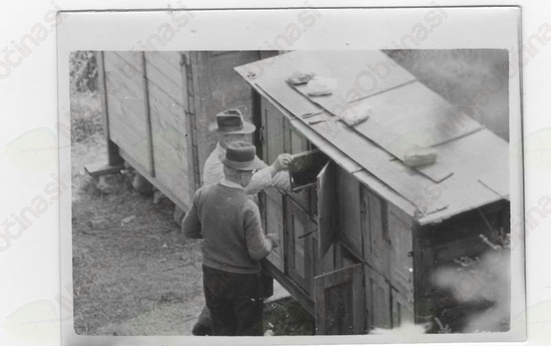 Skladovnice, Lika, Hrvaška, 1955, arhiv: Brane Kozinc