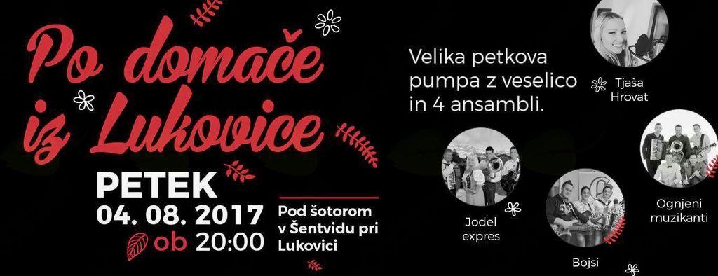 Po domače iz Lukovice, 4. ansambli v Šentvidu pri Lukovici