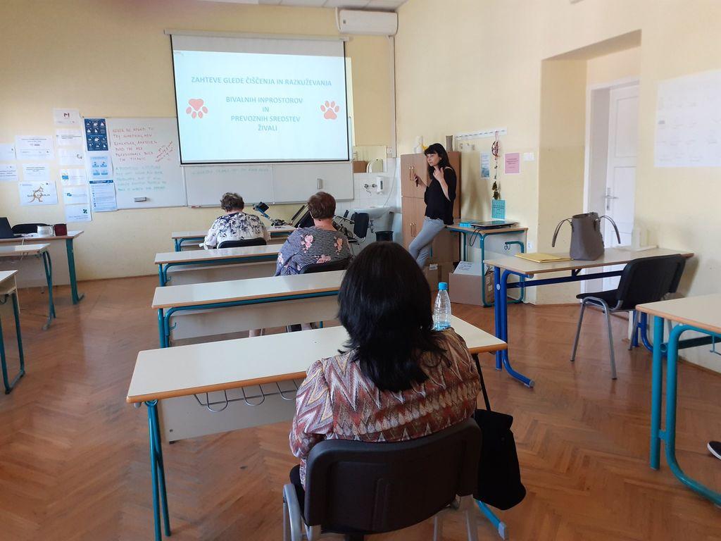 Junijske aktivnosti v okviru programa Socialna aktivacija