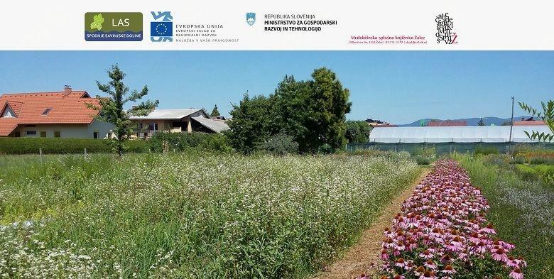 Predavanje Nataše Ferant: Pridelovanje in nabiranje zelišč