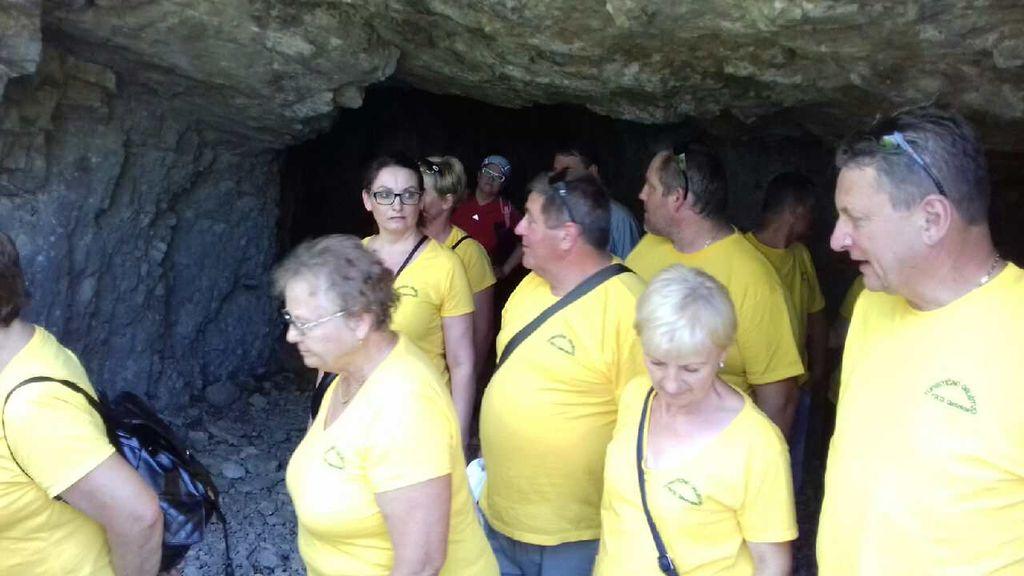 Strokovna ekskurzija