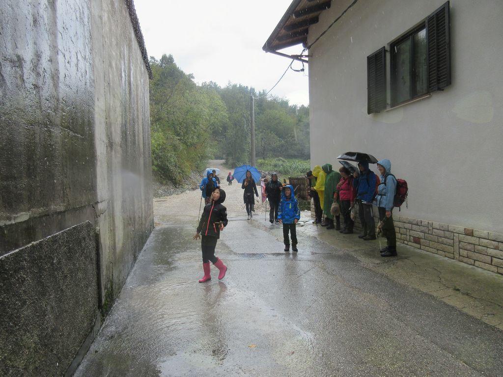 A res pada dež? Foto: Valter Reščič