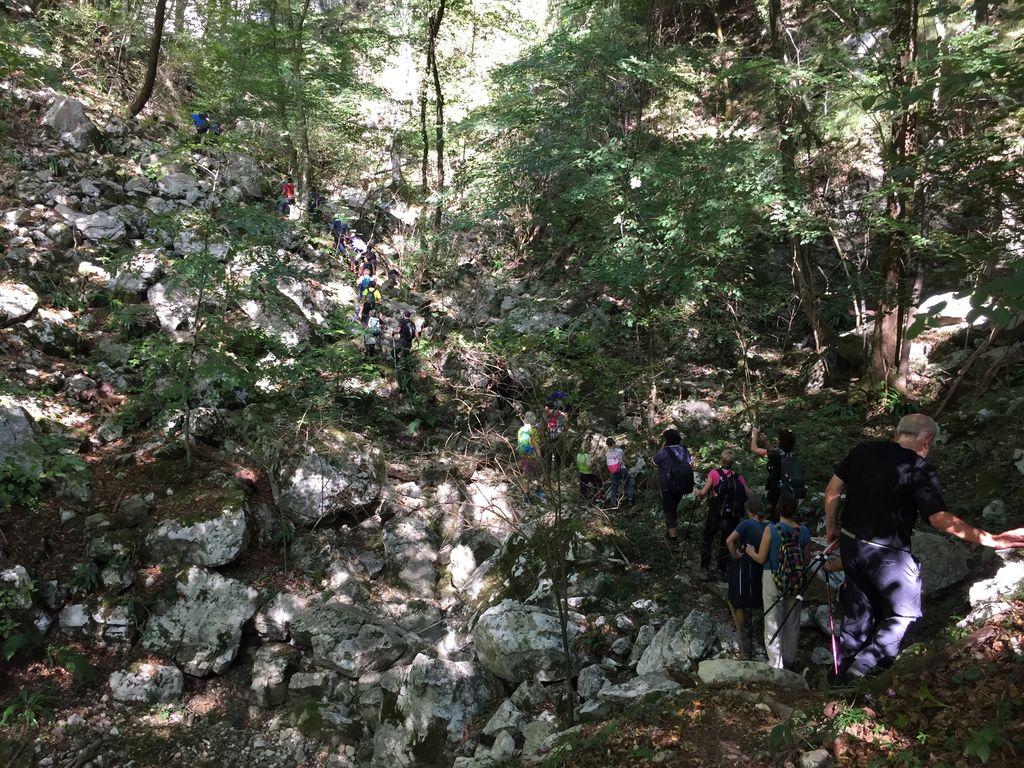 Proti Divji jami nad Plavmi