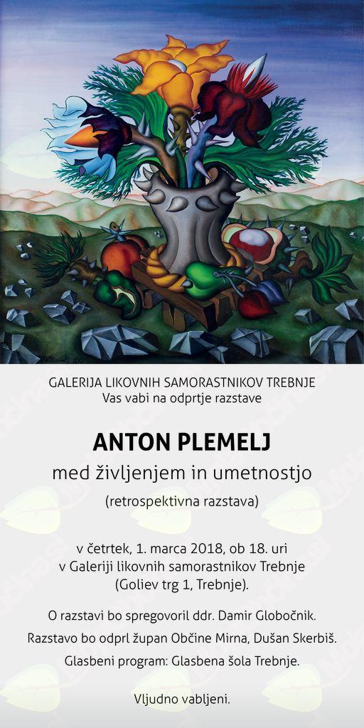 Otvoritev razstave Anton Plemelj, med življenjem in umetnostjo