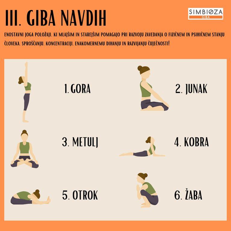 GIBA NAVDIH